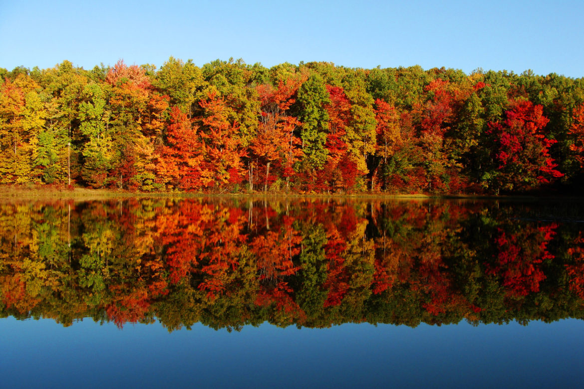 Four Reasons to Buy a Home this Fall, Four Reasons to Buy a Home this Fall, Life's A Beach Real Estate